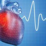 Cardio Oncologia