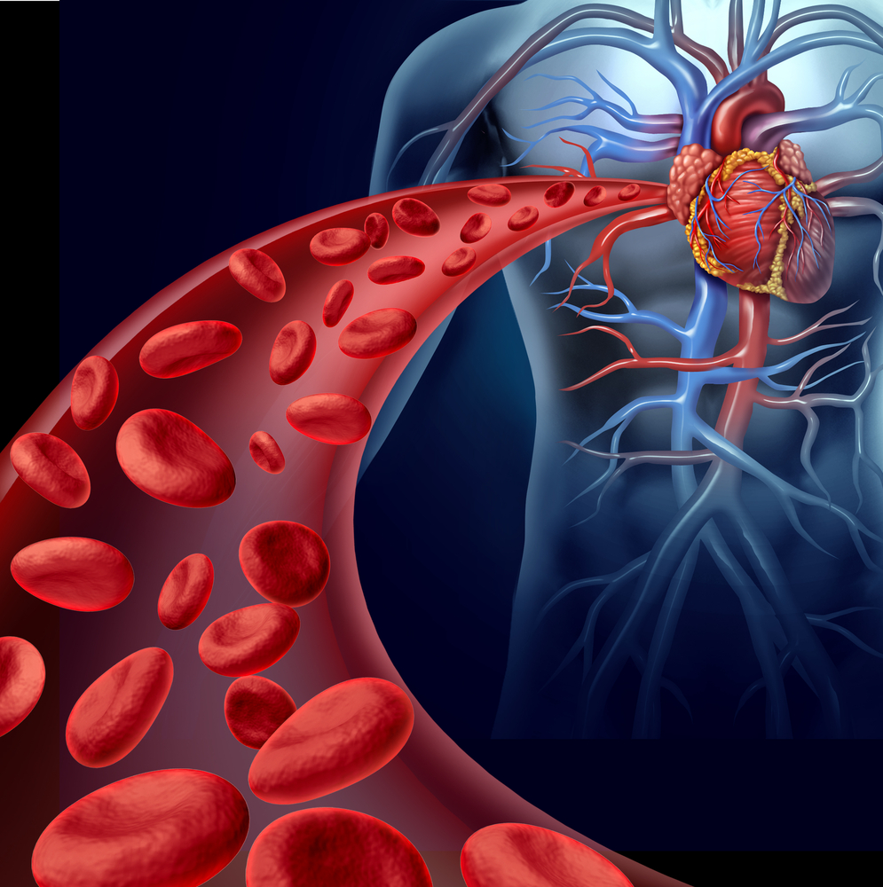 Grupo de Trabajo SCC Medicina Vascular